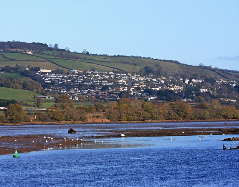 Newton-Abbot-River-Teign-Brewer-and-Bunney